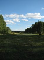 Stock: Meadow/Sky by Think-Outside-Of-Box