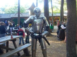 Ren Faire 2010- knight by Shadow-Lockheed