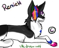 .rainbow wolf. by Reniah-colourWolf