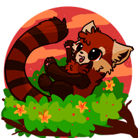 Fun Before Bedtime :Red Panda: by AppleDew