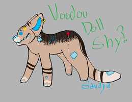Voodoo Shy.....? by Shy-Storm
