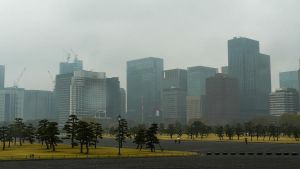 Imperial Garden, Tokyo Skyline by thecomingwinter