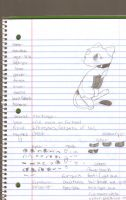 Mewlala the mew paper ref by Freezetheglaceon