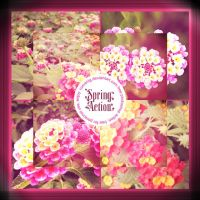 Love Spring Photoshop Action by Romenig