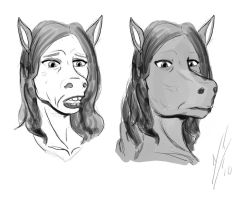 Horse Face 2 by Dragon-Storm