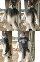 Bleis wolf Body Finished by Monoyasha