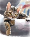 speedpaint-cat by moyan