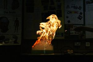 Fire Monster by Stolzer