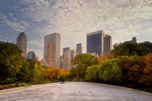 Fall in Central Park by Orzz
