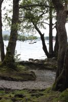 Lake District - Windermere 9 by Tasastock