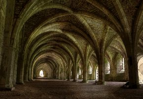 The Cellarium by Bootcoot
