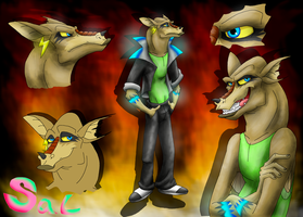 Character sheet - Sal by StanHoneyThief