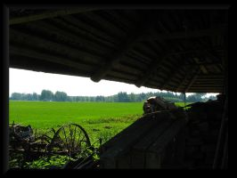 Country landscape... by Yancis
