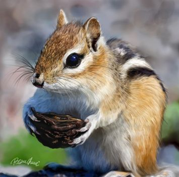 Squirrel Digital Painting by Rosane-Chawi
