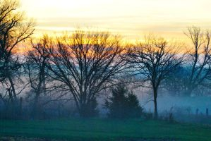 Foggy Sunrise by sweetz76