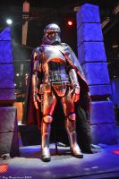 Captain Phasma at D23 Expo by Anime-Ray