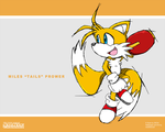 New Sonic Channel: Tails by Hawke525
