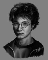 Harry Potter by Tyleen