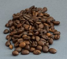Coffee beans_4 by gargamelix