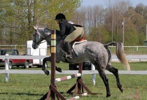 Me and Daisy Showjumping! by Cars2fangirl