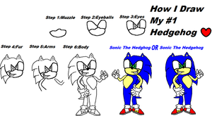 How i draw my no.1 hedgehog by Sonic-Lover9