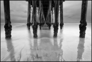 Seagate (Black and White Version) by AndrewShoemaker