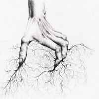 roots by LostOneself