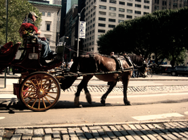 Horse and Buggy by Urban-Eye