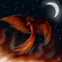 Fire in the Night Sky by toastysun125