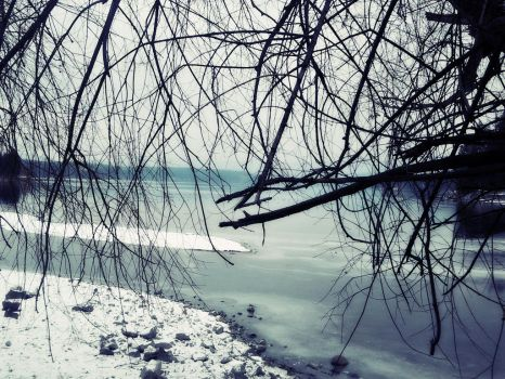 Cold December 5 by kvetched