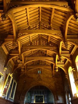 Bamburgh Castle ceiling by day-seriani