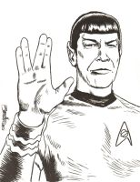 Mr. Spock by artistjerrybennett