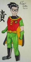 Robin 2013 by F-Stormer-3000