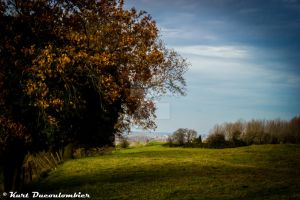 Flanders Fields - Heuvelland 4 by Riddseh