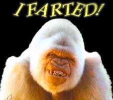 fart by Durn