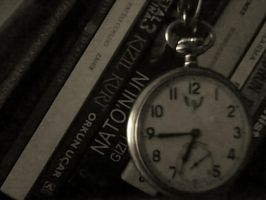 the time by monariza
