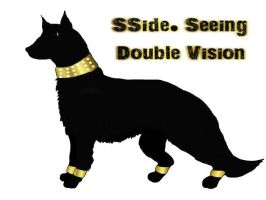 SSide. Seeing Double Vision by South-Sidee
