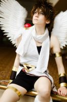 Pit: Kid Icarus! 2 by denni-cosplay