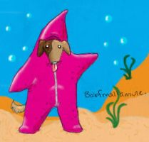 Starfish costume dog by PostMortem