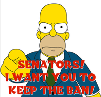 Homer Takes A Stand on Virginia Senate Bill 1353 by poasterchild