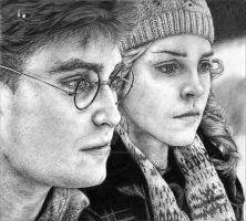 Harry and Hermione - HBP by leiaskywalker83