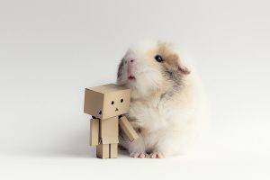 Danbo's new friend by lieveheersbeestje