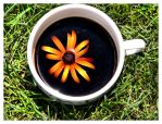 .cup of sunshine by chell-o