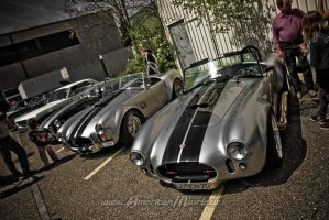 Bad Cobras by AmericanMuscle
