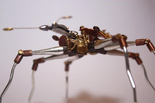 Steampunk beetle by hardwidge