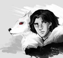 ASOIAF - Jon Snow and Ghost by emedeme