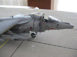 BAe Harrier Gr7 RAF 14 by marek1101