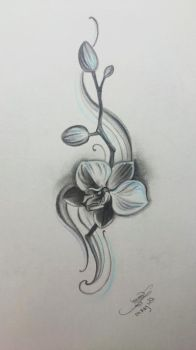 Orchid  by B1ackRain