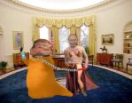 White House  2017  who's the real president by paul626