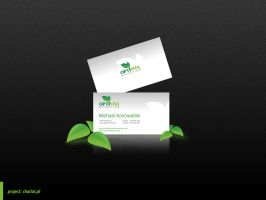 Optivita Business Card v2 by snozexp